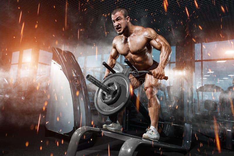 Muskulös kroppsbyggare för idrottsman nen i idrottshallutbildningsbaksidan royaltyfri foto