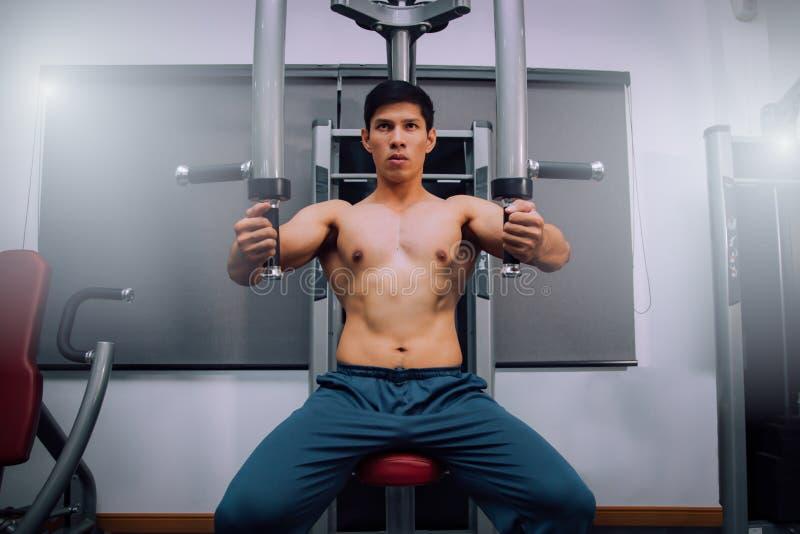Muskulös kroppsbyggareutbildning för idrottsman nen på simulatorn i idrottshallen, stark man Nära övre män i idrottshallövningsbe royaltyfria foton