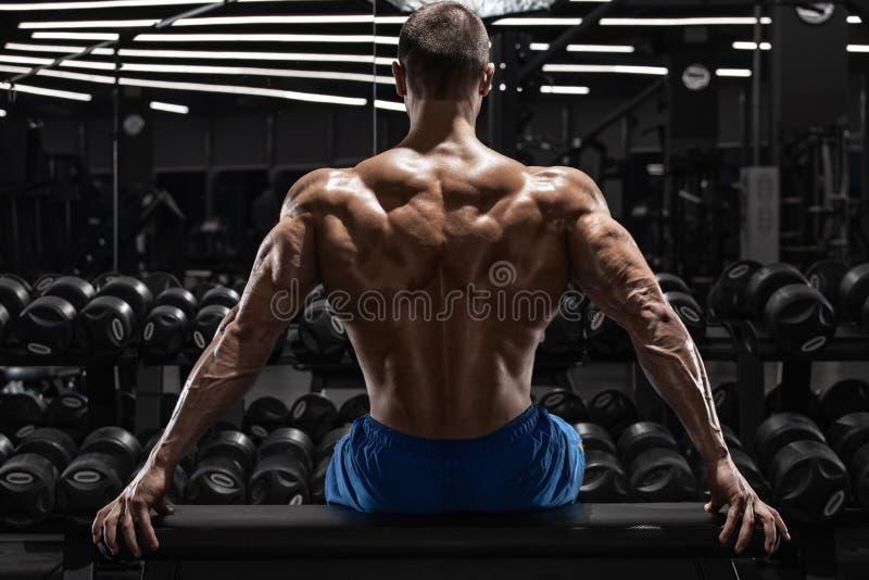 Muskulös man för bakre sikt som tillbaka visar muskler på idrottshallen Stark manlig naken torso, genomkörare arkivbild