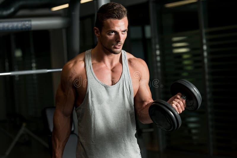 Muskulös man som övar biceps i idrottshall royaltyfria bilder