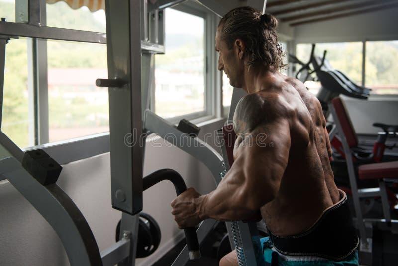 Muskulös man som gör tungviktövningen för baksida royaltyfria foton