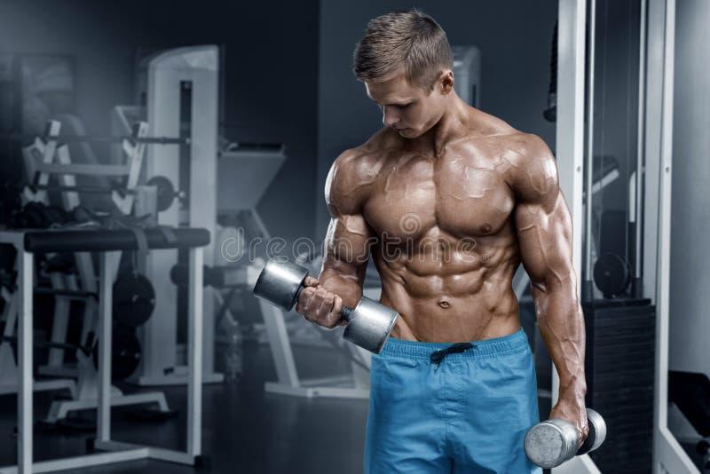 Muskulös man som utarbetar i idrottshallen som gör övningar med hantlar, manlig naken torsoabs för kroppsbyggare arkivfoto