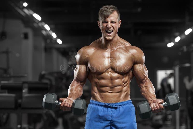 Muskulös man som utarbetar i idrottshallen som gör övningar med hantlar, stark manlig naken torsoabs royaltyfria bilder
