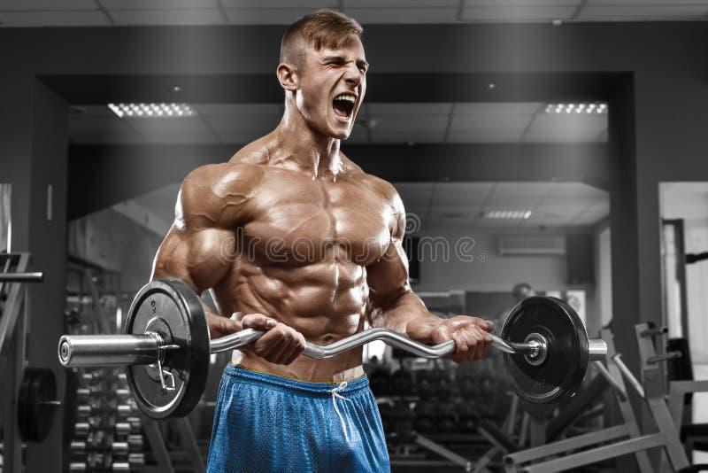 Muskulös man som utarbetar i idrottshallen som gör övningar med skivstången på biceps, stark manlig naken torsoabs royaltyfri fotografi