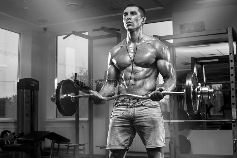 Muskulös man som utarbetar i idrottshallen som gör övningar med skivstången, stark manlig abs royaltyfri fotografi