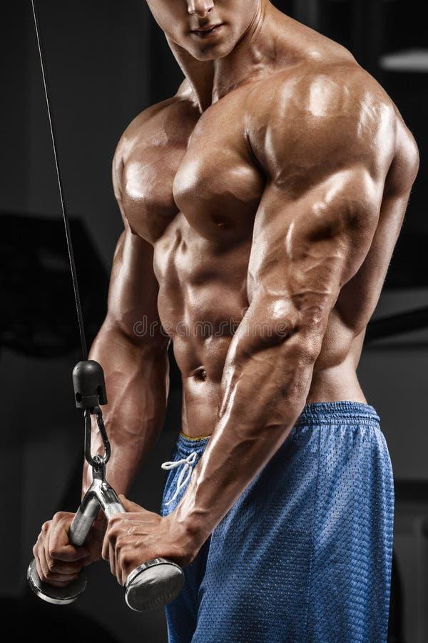 Muskulös man som utarbetar i idrottshallen som gör övningar, triceps, stark manlig naken torsoabs royaltyfria foton
