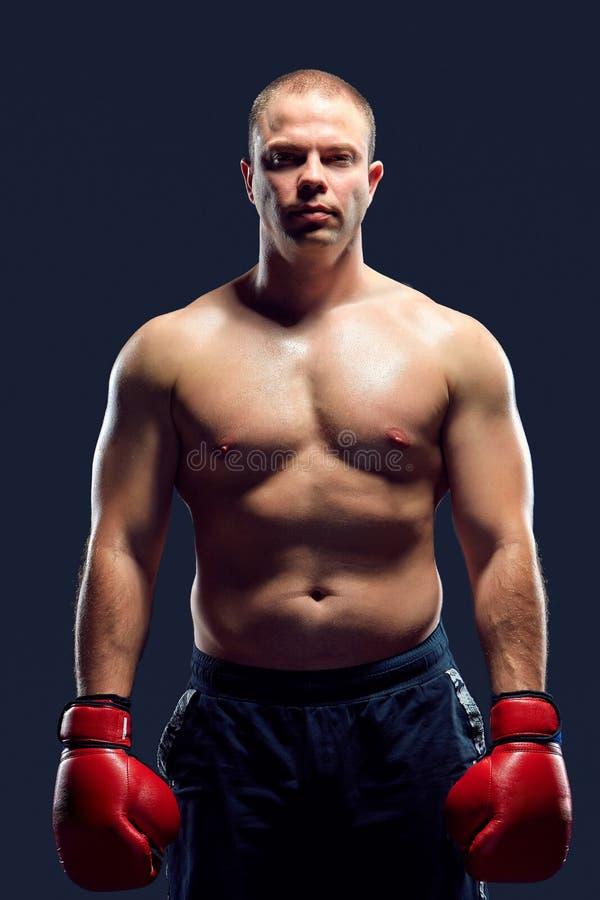 Muskulös man - ung caucasian boxare royaltyfria bilder