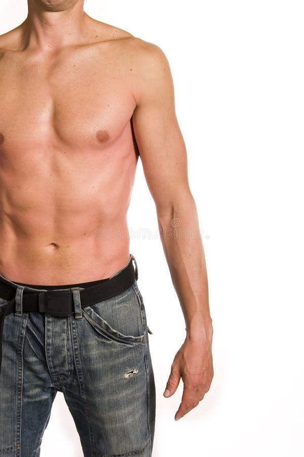 muskulös manlig royaltyfria foton