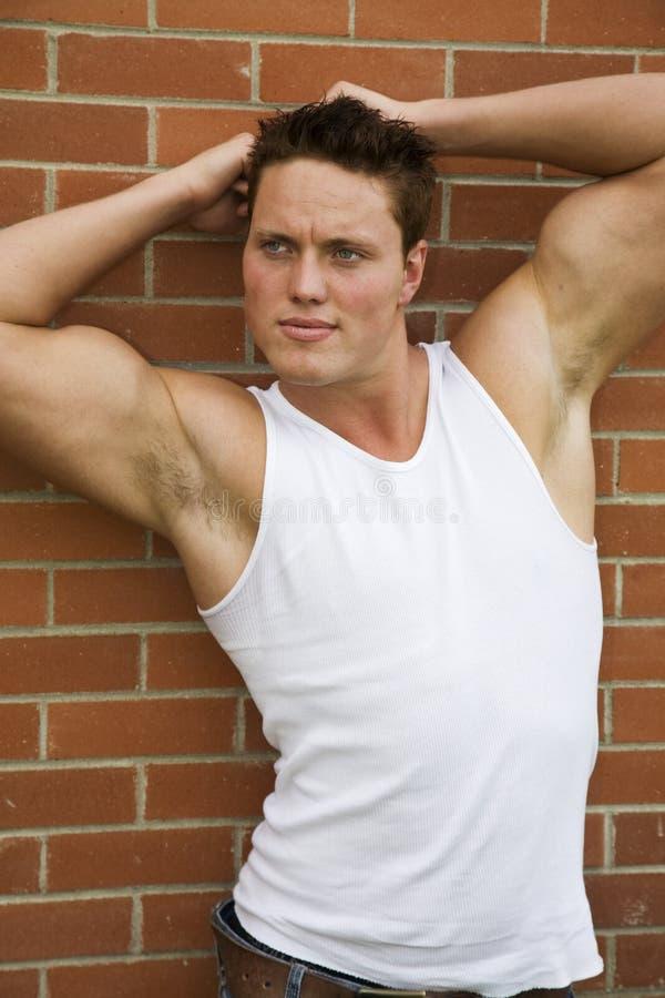 muskulös manlig royaltyfri foto