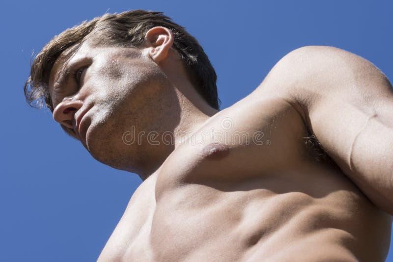 Muskulös manlig snygg man arkivfoto