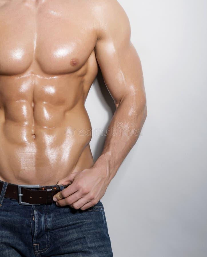 Muskulös manlig torso arkivbild
