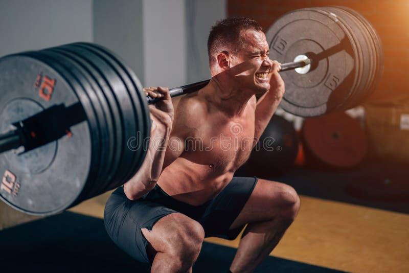 Muskulös manutbildning squats med skivstånger på skuldror royaltyfri fotografi