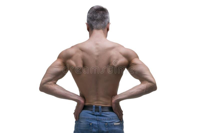 Muskulös medelålders man som poserar på vit bakgrund, isolerat studioskott, baksidasikt royaltyfri bild