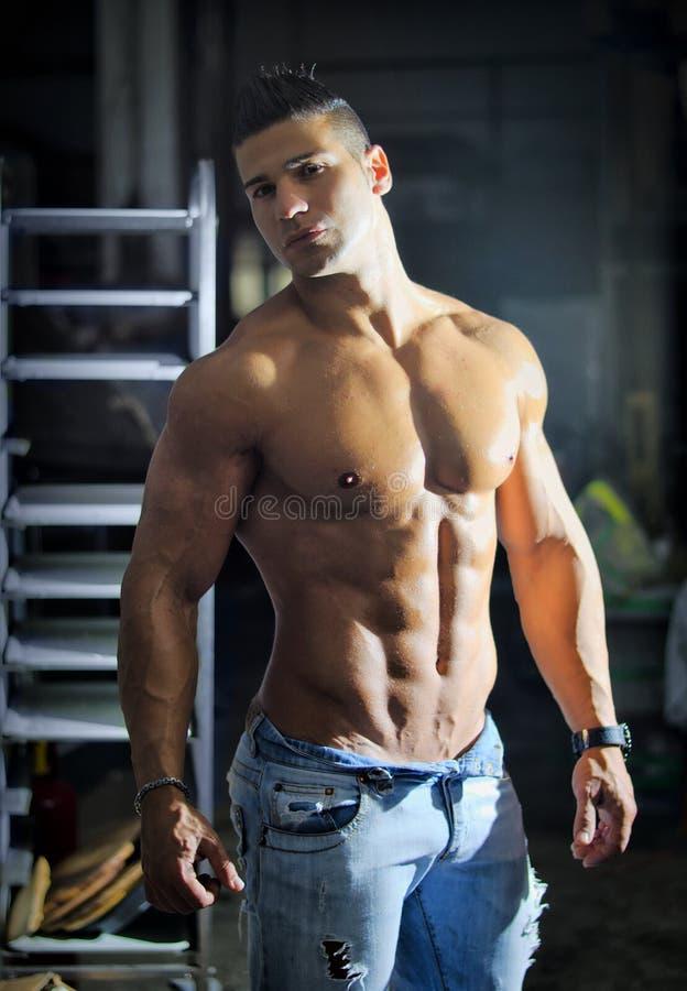 Muskulös ung latinoman som är shirtless i jeans inomhus royaltyfri bild