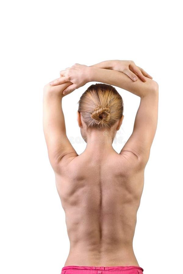 Muskulöse Rückseite der Frau stockfotos