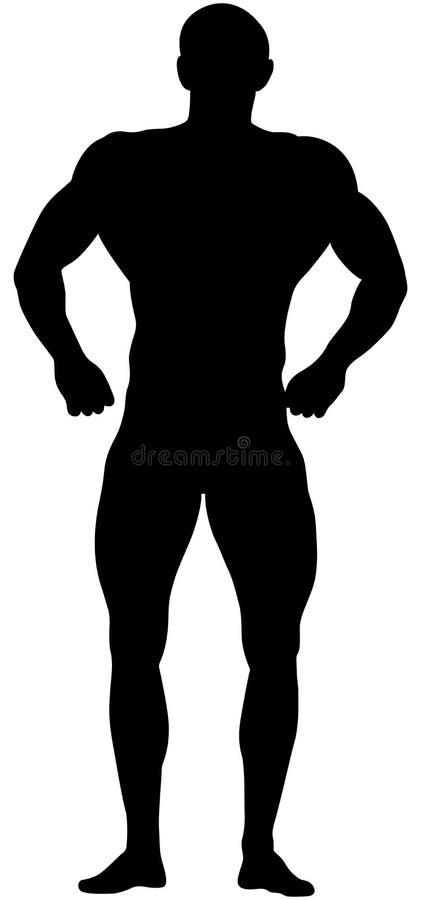 Muskulöser athletischer Bodybuilder vektor abbildung