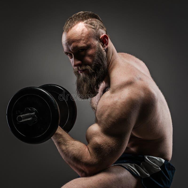 Muskulöser bärtiger Bodybuilderkerl, der Übungen mit Dummköpfen tut lizenzfreie stockfotos