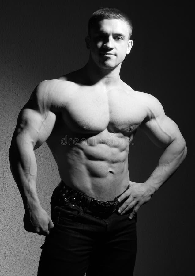 Muskulöser Bodybuilder stockbilder