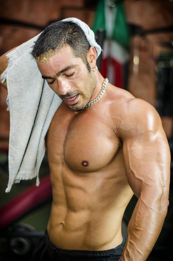 Muskulöser Bodybuildertrockner schwitzte von seinem Gesicht mit einem Tuch lizenzfreie stockfotografie