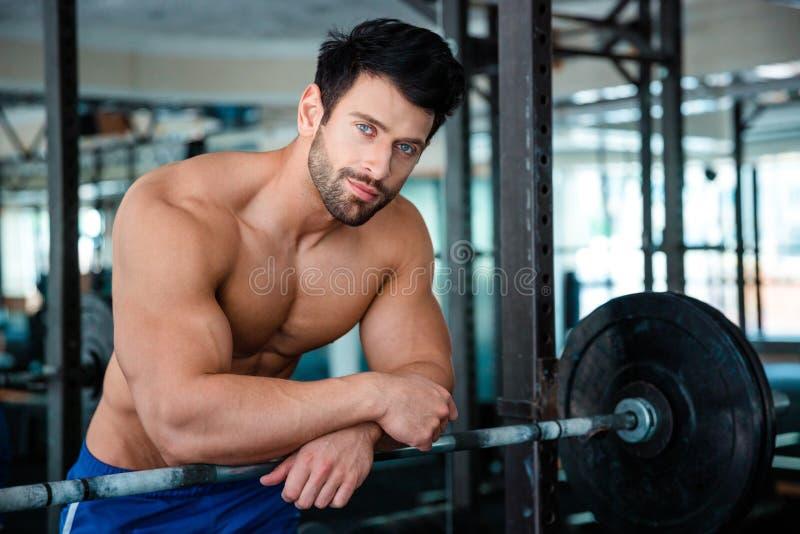 Muskulöser männlicher Bodybuilder, der Kamera betrachtet stockfotografie