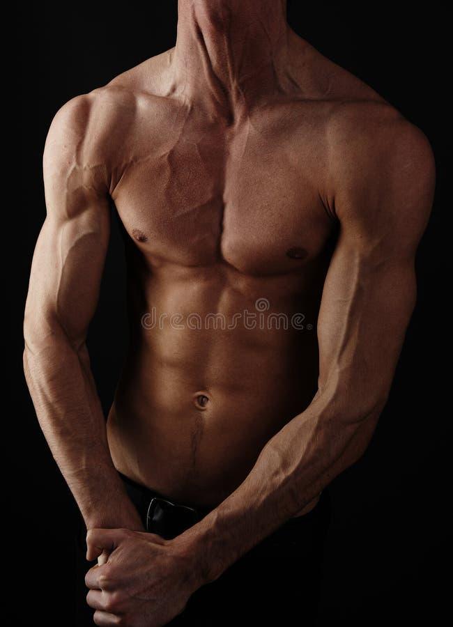 Muskulöser männlicher Torso getrennt auf schwarzem Hintergrund. stockfoto