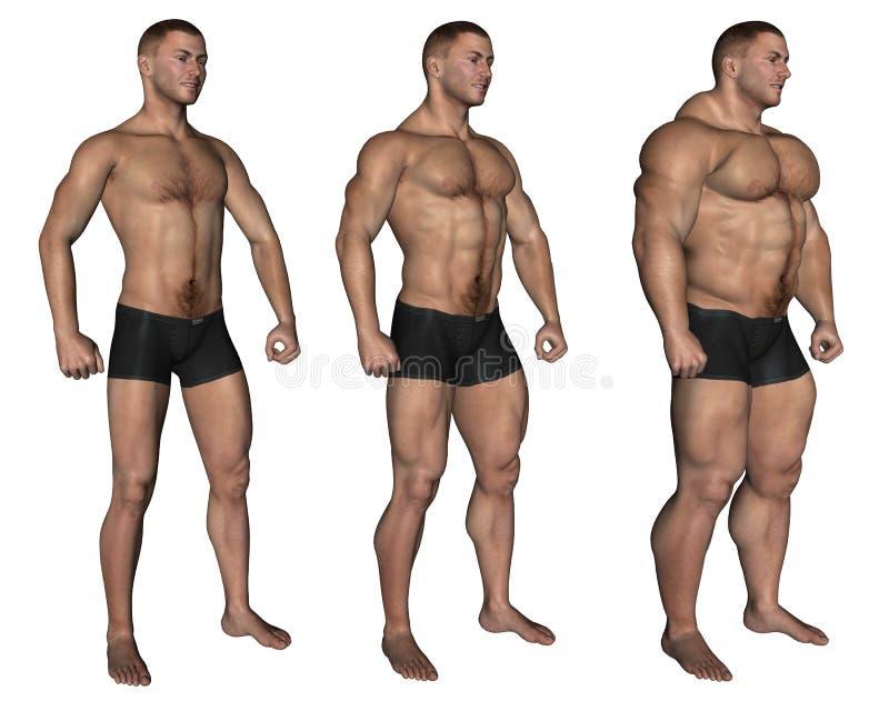 Muskulöser Mann stock abbildung. Illustration von brawny - 16168374
