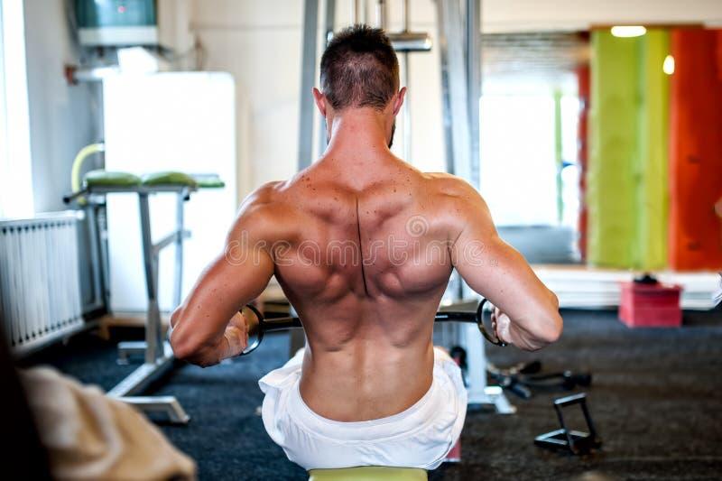Muskulöser Mann auf täglichem Trainingsprogramm an der Turnhalle, Nahaufnahme der Rückseite lizenzfreie stockfotografie