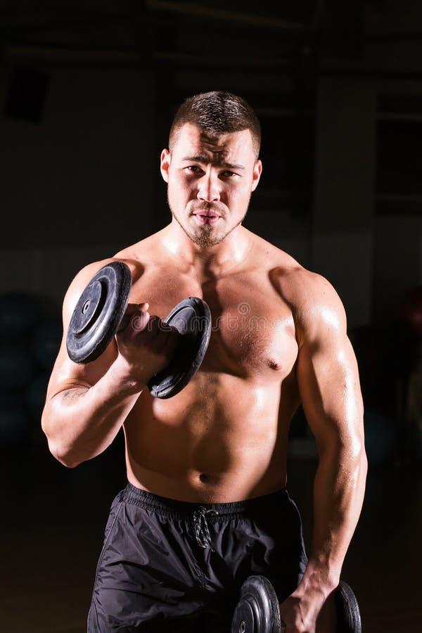 Muskulöser Mann, der in der Turnhalle tut Übungen mit Dummköpfen an den Bizepsen, starke männliche nackte Torso-ABS ausarbeitet lizenzfreie stockfotos