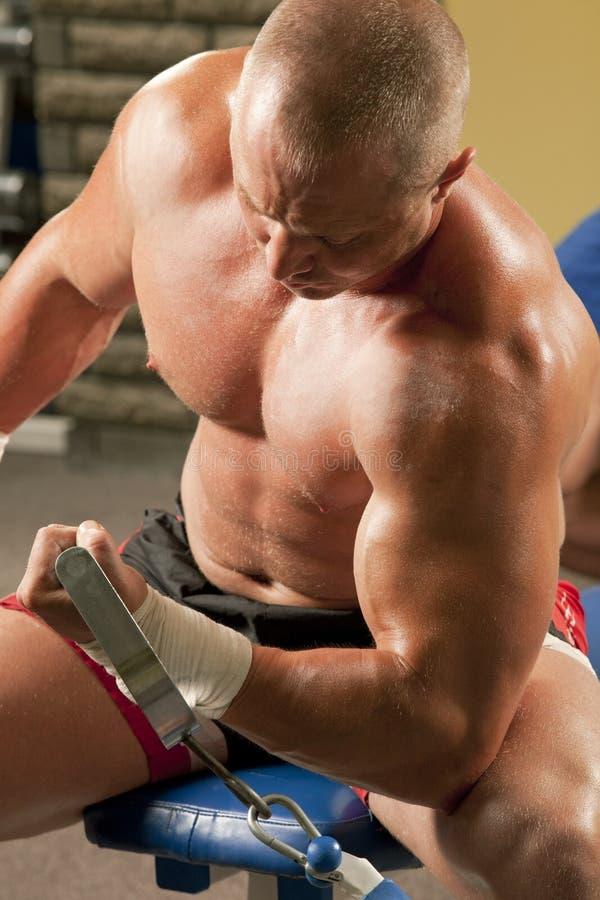 Muskulöser Mann, der Weightlifting in der Gymnastik tut stockfoto