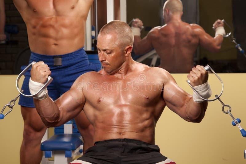Muskulöser Mann, der Weightlifting in der Gymnastik tut stockfotografie