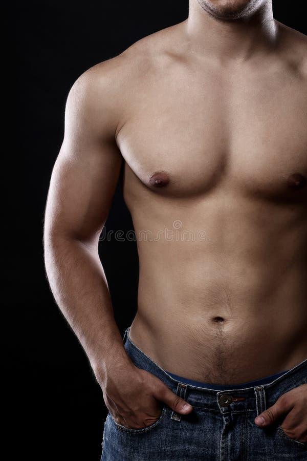 Muskulöser Torso des jungen Mannes stockbilder