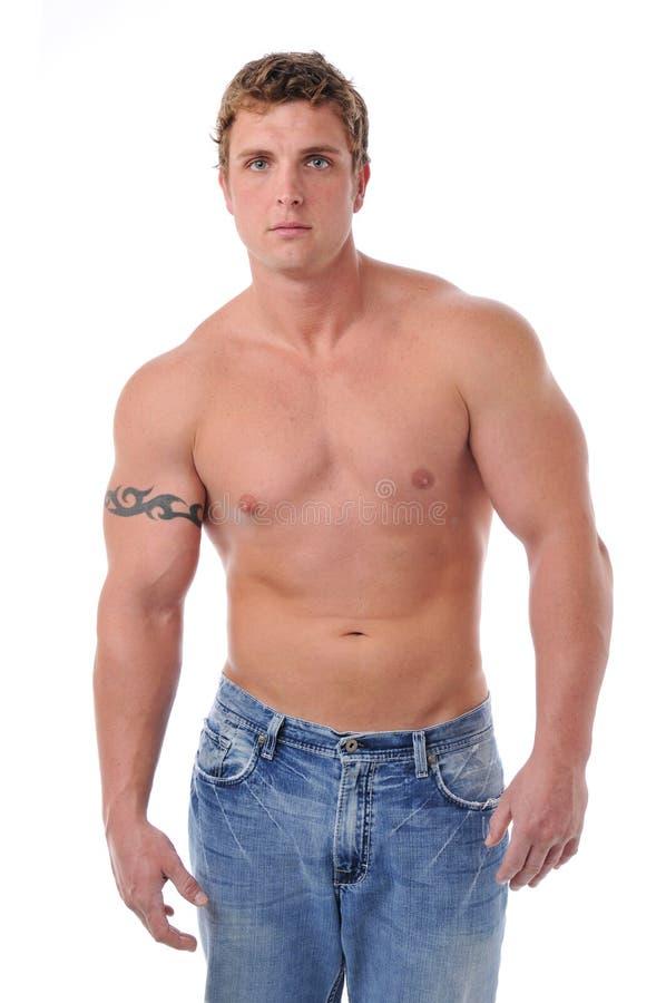 Muskulöser Torso des jungen Mannes stockbild