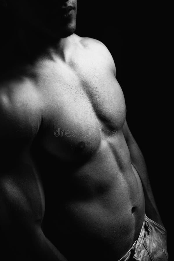 Muskulöser Torso und Abdomen des Mannes mit reizvoller Karosserie lizenzfreie stockfotos