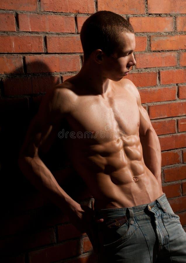 Muskulöses Baumuster stockfoto