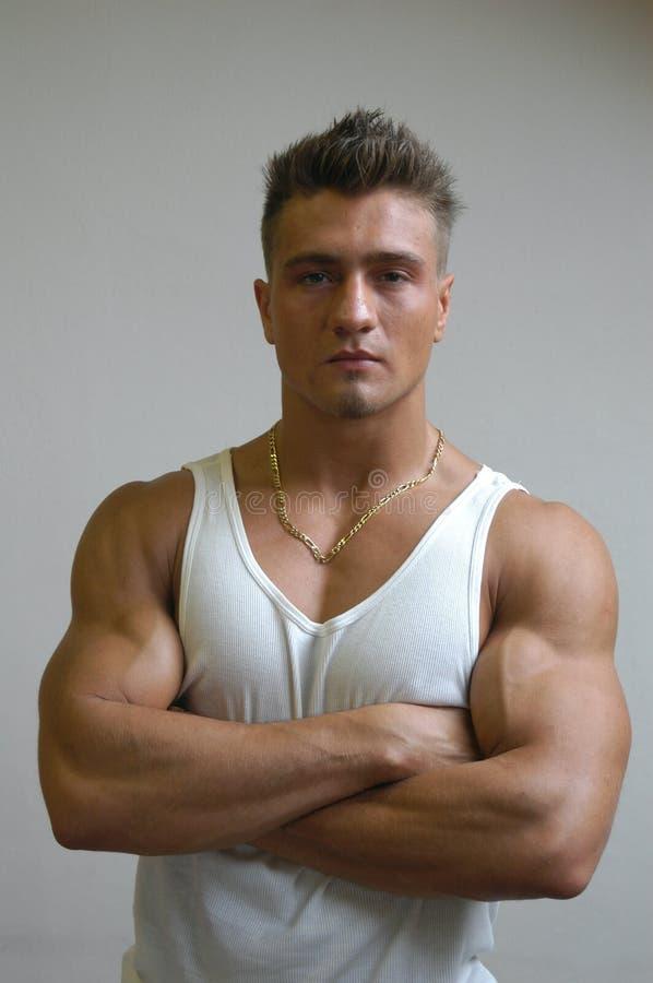Muskulöses männliches Baumuster lizenzfreies stockfoto