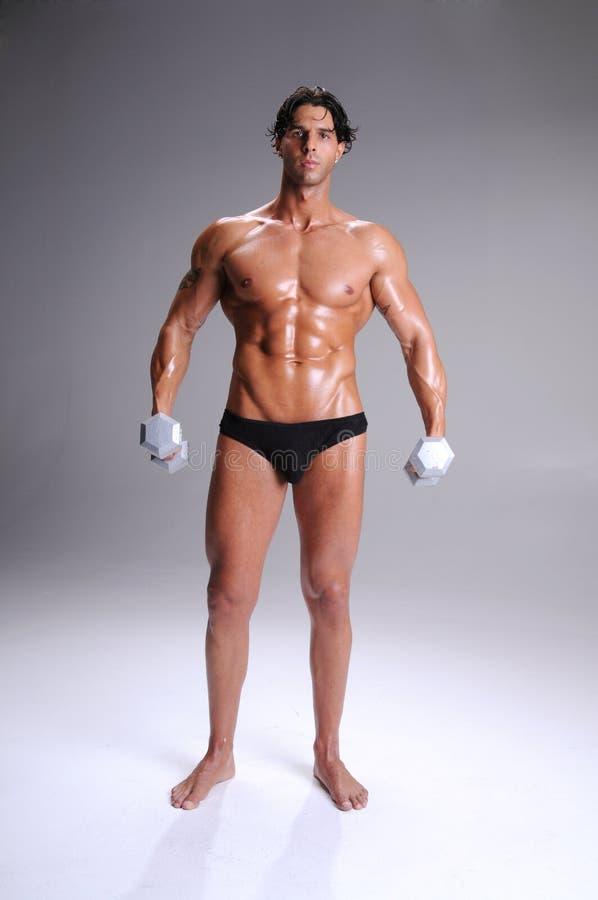 Muskulöses Mann-Training lizenzfreie stockfotografie