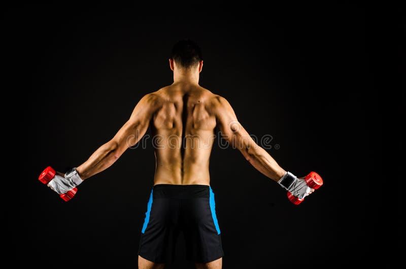 Muskulöses Manntrainieren lizenzfreie stockfotografie
