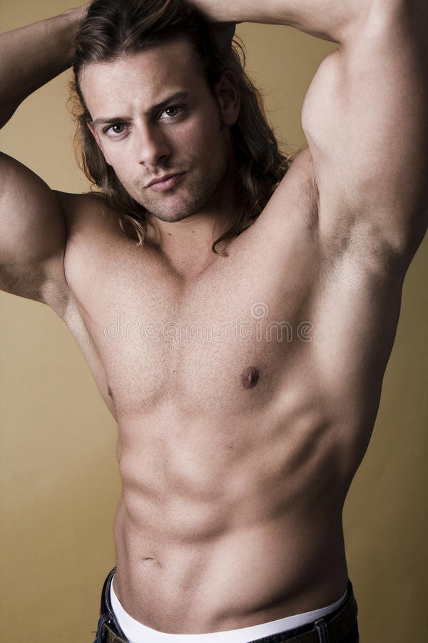 muskulöst sexigt för man royaltyfria bilder