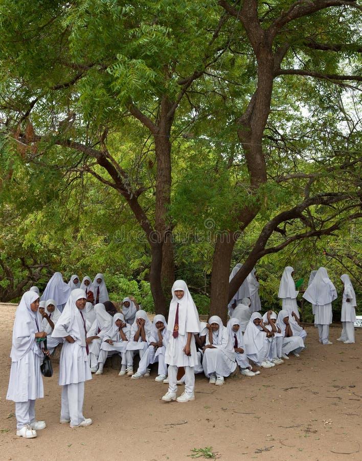 Download Muslim Moslem School Kids With Headscain Sri Lanka Editorial Stock Image - Image: 23008939