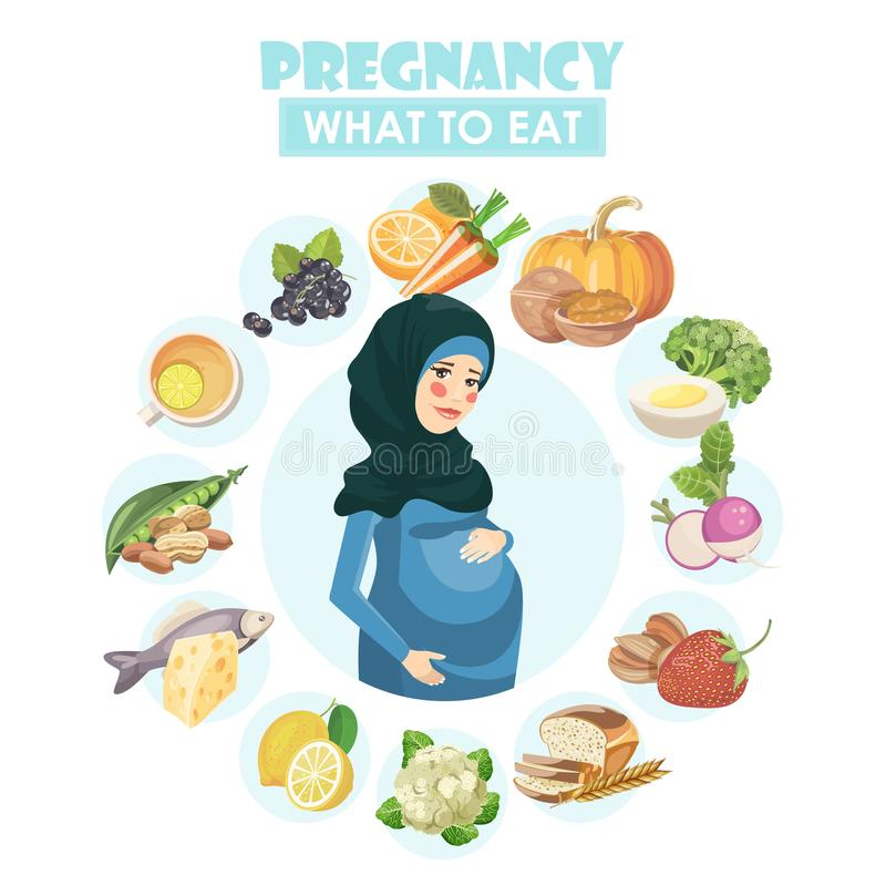 Muslim pregnant woman. Vector colorful illustration with pregnancy concept. Healthy food stock illustration