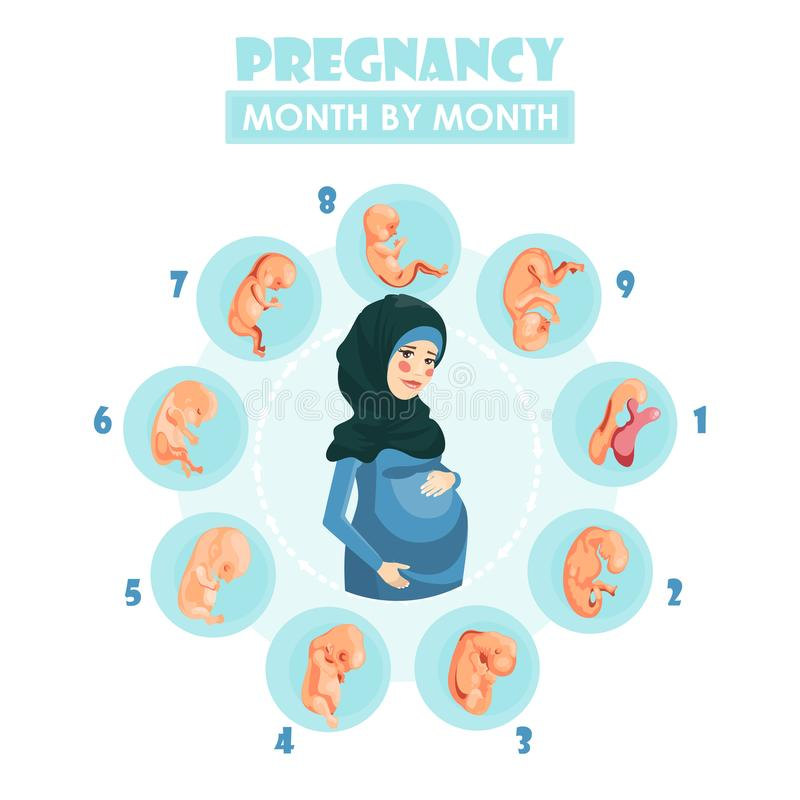 Muslim pregnant woman. Vector colorful illustration with pregnancy concept. stock illustration