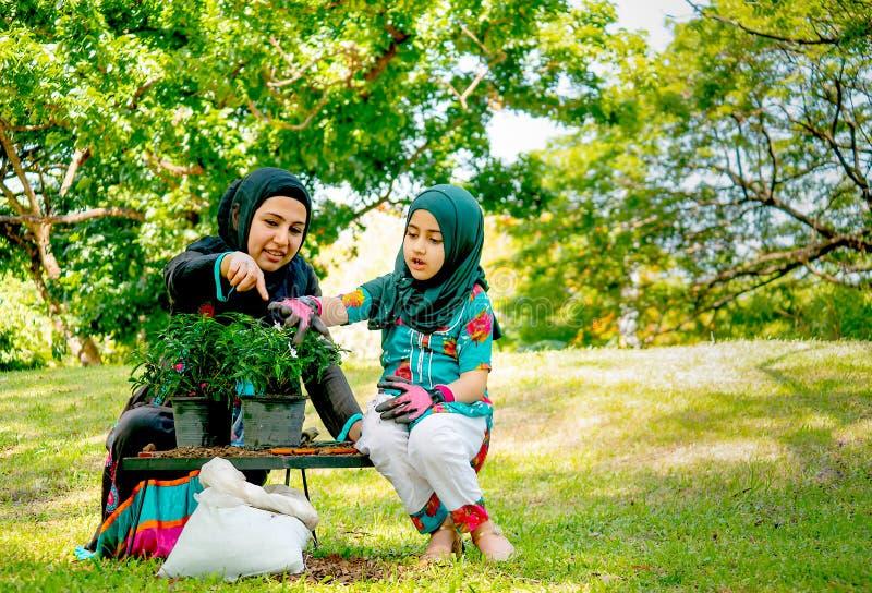 Muslimsk moderhjälp och att undervisa hennes dotter att växa och plantera ett träd i trädgården arkivbild