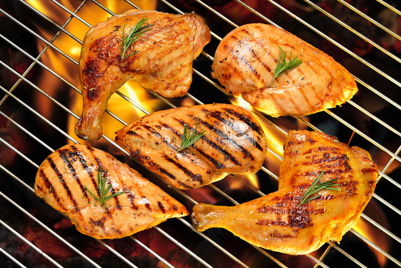Muslo asado a la parrilla de la pechuga de pollo y del pollo foto de archivo