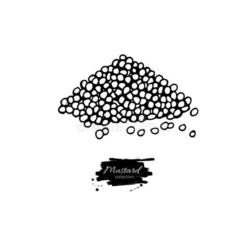 Musrard-Samenhaufen-Vektorzeichnung Hand gezeichneter Würzestapel Lebensmittelwürze, Dijon-Bestandteil lizenzfreie abbildung