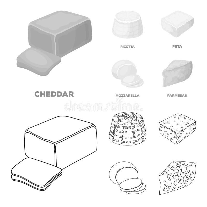 Mussarela, feta, queijo Cheddar, ricota Tipos diferentes de ícones ajustados da coleção do queijo no esboço, vetor monocromático  ilustração stock