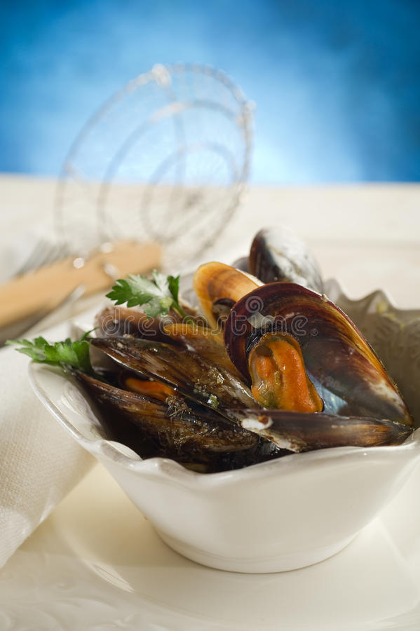 Mussel soup stock images