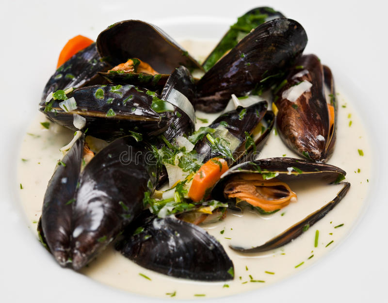 Mussel soup. With blue mussels stock photography