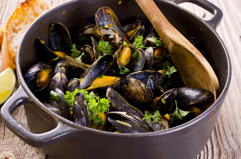 Mussel Stew in White Wine. As closeup in a cast pot stock images