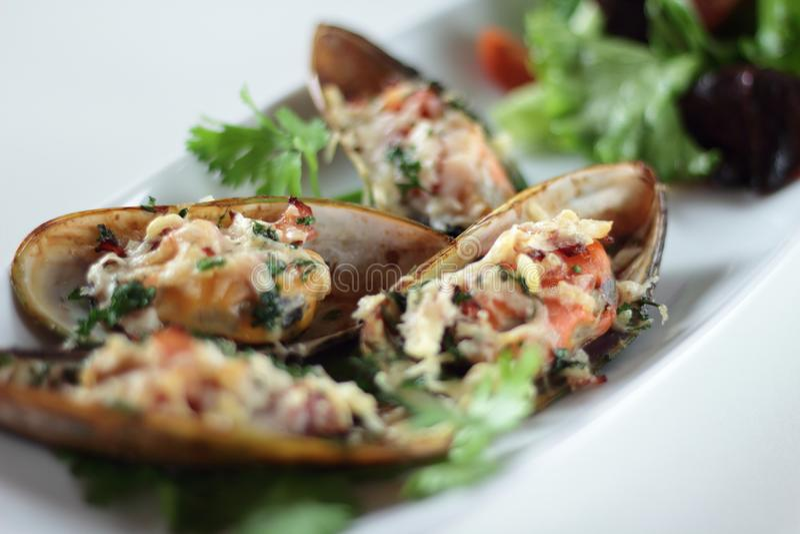 Mussels au gratin obrazy stock