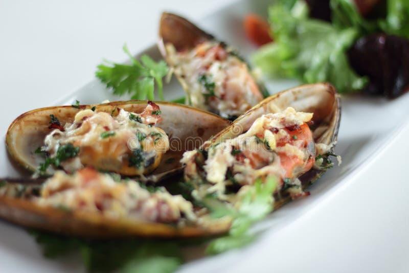 Mussels au Gratin stock images